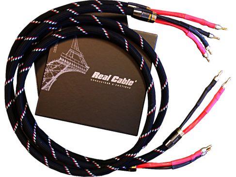 REAL CABLE CHAMBORD II SP 3M (Câble assemblé 2 x 3m)
